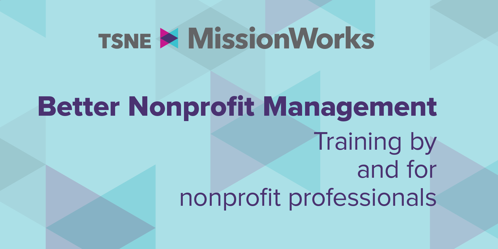 Better Nonprofit Management Series